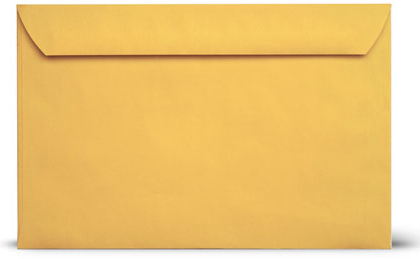 #6x9 booklet brown Blank Envelopes